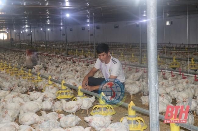 Thanh Hóa: Tập trung xây dựng chuỗi cung ứng thực phẩm an toàn
